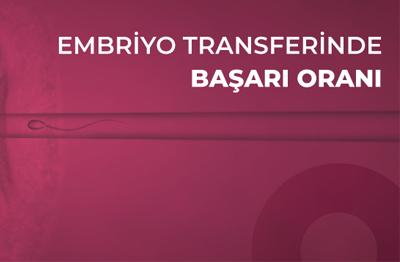 Embriyo Transferinde Başarı Oranı