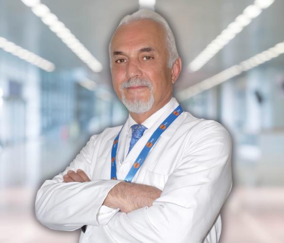 Ahmet Hamdi Karanfil
